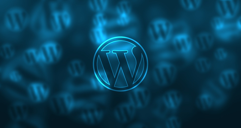 wordpress webseite
